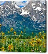 Tetons Peaks And Flowers Center Panel Canvas Print