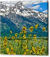 Tetons Peaks And Flowers Right Panel Canvas Print