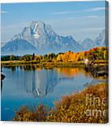 Tetons With Moose Canvas Print