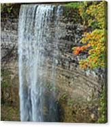 Tews Falls In Autumn Canvas Print