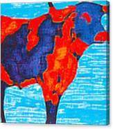 Texan Longhorn Canvas Print