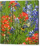 Texas Best Wildflowers Canvas Print