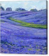 Texas Blue Canvas Print