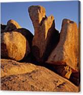 Texas Canyon Golden Boulders Canvas Print