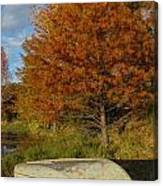 Texas Fall Color With Boat Canvas Print