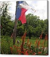 Texas Glory Canvas Print