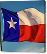 Texas State Flag - Texas Lone Star Flag Canvas Print