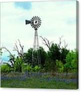 Texas Windmill And Bluebonnets Canvas Print