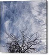 Texas Winter Clouds Canvas Print