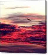 Textured Clouds Canvas Print