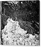 Texture No.2 B W Canvas Print