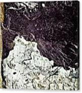 Texture No.2 Raw Canvas Print