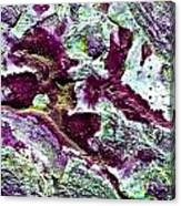 Texture No.7 Effect 9 Canvas Print