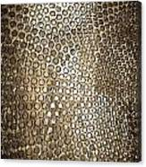 Texture Of Gong Canvas Print