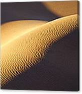Texture Pattern On Sand Dunes Canvas Print
