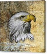 Textured Eagle  Canvas Print