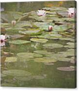 Textured Lilies Image  Canvas Print
