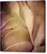 Textured Rose Petals In Lilac Canvas Print