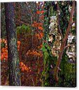 Textures Of Fall Canvas Print