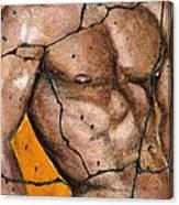 Thaddeus - Study No. 1 Canvas Print