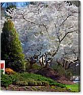 Thank You Canon U S A Canvas Print