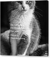 Thanksgiving Kitty Bw Canvas Print