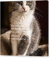 Thanksgiving Kitty Canvas Print