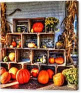 Thanksgiving Pumpkin Display No. 1 Canvas Print
