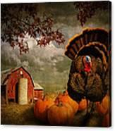 Thanksgiving Turkey Among Pumkins Canvas Print