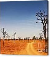 Thar Desert Canvas Print