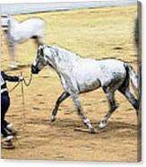 That Trot Off Canvas Print