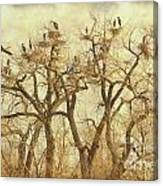 Thats A Lot Of Great Blue Heron Canvas Print