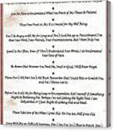 The 10 Commandments For Pets On Red Marble Canvas Print