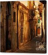 The Alley Canvas Print