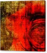 The Allure Of A Rose Canvas Print