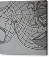 the amazing Spiderman 2 Canvas Print
