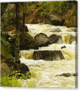 The Amsden River Wyoming Canvas Print