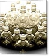 The Apple Bottle Canvas Print