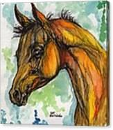 The Arabian Foal Canvas Print
