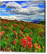 The Art Of Wildflowers Canvas Print