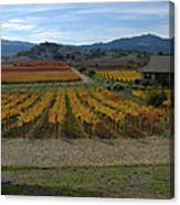 The Artist In The Vineyard Canvas Print