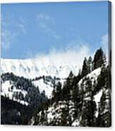 The Artwork Of Winter Canvas Print