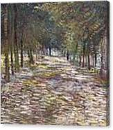 The Avenue At The Park Canvas Print