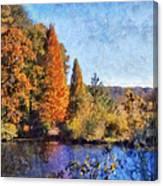The Bald Cypress Canvas Print