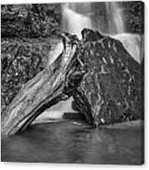 The Base Of The Falls Canvas Print