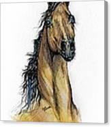 The Bay Arabian Horse 13 Canvas Print