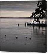 The Bay Is Frozen Canvas Print