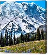 The Beautiful Mount Rainier At Sunrise Park Canvas Print