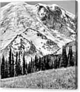 The Beautiful Mount Rainier At Sunrise Park - Washington State Canvas Print