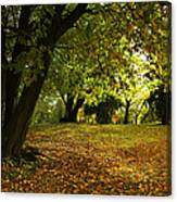 The Beauty Of Autumn Canvas Print